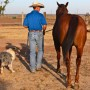 Be a Partner to Your Horse